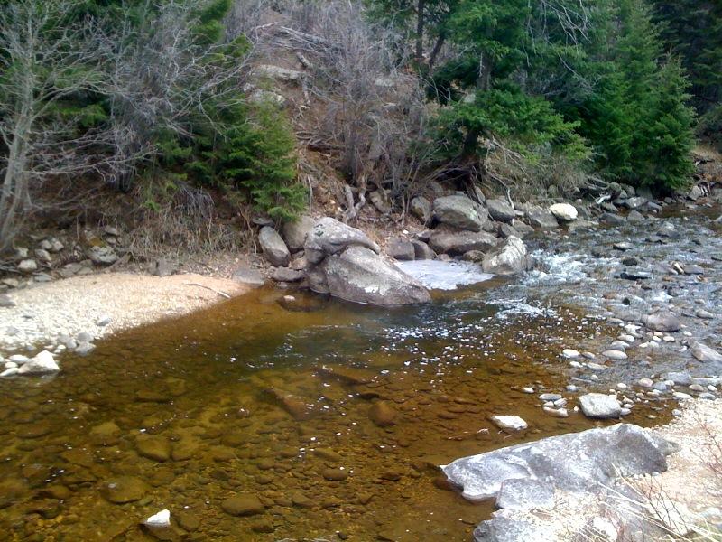 Boulder creek fishing upland hunting the springer for Boulder creek fishing